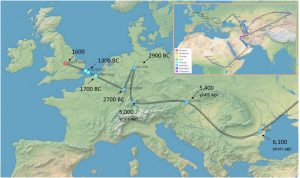 Y-DNA route from Africa